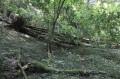 De Boussenois à Vernois-lès-Vesvres dans la Forêt de Chamberceau