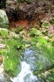 l'huveaune et grotte de la castelette