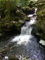 L'une des 1ère petites cascades