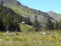La bergerie