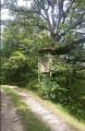 La cabane à Tarzan