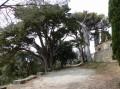 Montolieu et la chapelle Saint-Roch
