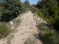 La chaussée du pont du Cannet