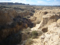 Au bord du canyon