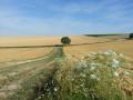 La descente vers Brantigny