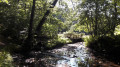 La double passerelle sur le ruisseau des Moulergues