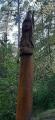 Le Trou des Fées et les bois du Bonlieu et de Lacquet