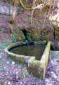 La fontaine de la Côte Renaud