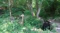 Boucle de la Fontaine des Trois Notaires au départ de Lamure-sur-Azergues