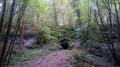 La Fontaine des Acacias