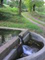 La Fontaine Fiacre dans la vallée de la Véronne