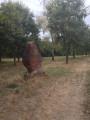La Forêt des Mille Poètes