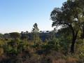 La forêt domaniale de la Colle du Rouët