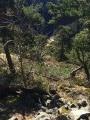 La Gagne depuis la route forestière