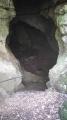 La grotte du bois de Paris .