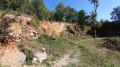 Chemins des lavoirs et fontaines autour d'Ardin