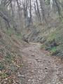 De la Frange Verte vers les Hauts de Jarrie, retour par la Voie Romaine