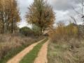 La piste menant au Hameau des Palhers