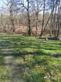 Les étangs du Centre Jean Rostand à Pouydesseaux