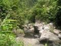 La Ravine du Butor