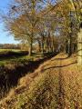 La Rigole de Boulet et la Motte aux Anglais
