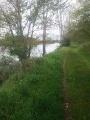 La rive de la Loire à Mareau-aux-prés
