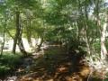 La Rivière Sianne