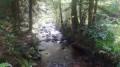 Les étangs par le Prieuré d'Hérival