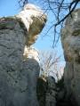 Combe aux mammouths et falaises de Beaume-la-Roche