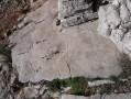 La roche gravée du berger