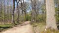 La Forêt de Verrières-le-Buisson