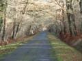 La route de Vanne