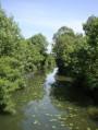 En passant par les Casses à Frangy-en-Bresse