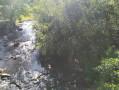La Sienne au niveau du Moulin de Mauny