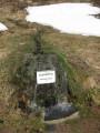 La source de la Thur