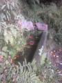 La Source des Corbeaux