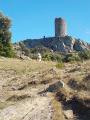 La Tour de la Massane depuis La Vall
