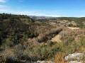 La vallée du Rieusec