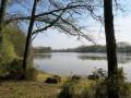 Lac de Vioreau au début du printemps