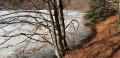 Petite boucle du Lac des Perches