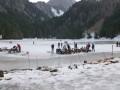 Lac des Plagnes Gelé