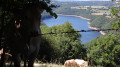 Lac du barrage de Sarrans