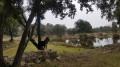 Sur le versant Est du Causse de l'Hortus