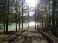 Forêt de Fabas et Lac de Saint-André
