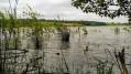 Le Lac de Laragou à Montpitol
