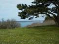 De Paimpol à Loguivy de la Mer par la Pointe de l'Arcouest