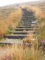 Larges escaliers