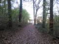 À la découverte du kiosque du Belvédère de Châtillon en forêt de Rosny