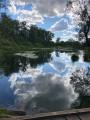 Le Brunnwasser