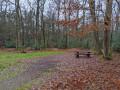 Des méandres de l'Ille aux lignes de la forêt de Rennes